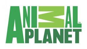 Animal Planet HQ Live