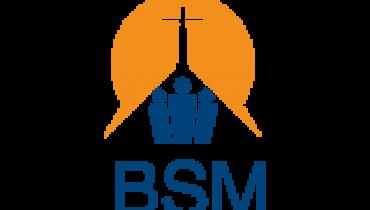 BSM TV HAITI