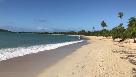 Vieques Overall