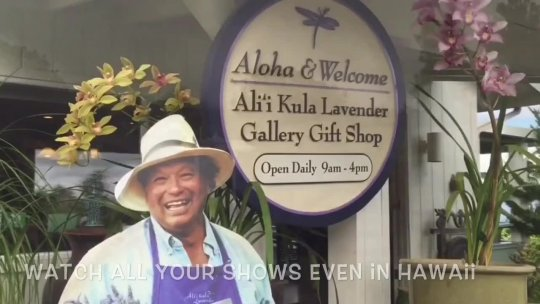 Maui Serenity Health Promo